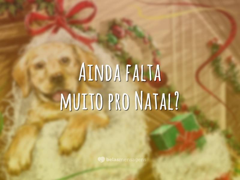 Foto Mensagem de Feliz Natal 4